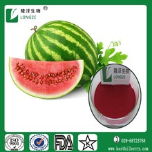 wassermelone saftkonzentrat pure bottom price
