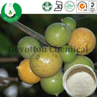 GMP&COSHER Natural High Quality Lose weight product/Garcinia Cambogia Extract- Hydroxycitric acid