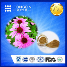 Echinacea Extract of polyphenol 4% UV cichoric acid 2% HPLC