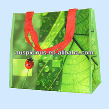 Beautiful and best selling pp woven bag for packaging