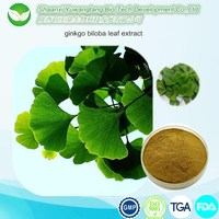 chinese herb ginkgo biloba leaf extract for Anti-aging