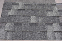 Free Design China Made Gray Fiberglass Asphalt Shingle