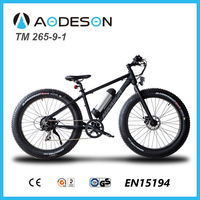 36V 350W fat tire electric bike/bicycle, beach cruiser TM265-9-1 for beach sport with lithium battery