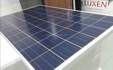 High Efficiency Polycrystalline Solar Panel 1640*992*40 60 cells (LNSE-245watt,)