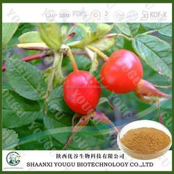 ci mei guo herb medicine extract 40%UV Polyphenols Rose hip Extract
