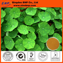 100% Natural Centella Asiatica Extract Powder/Centella Asiatica P.E Used for Softgel