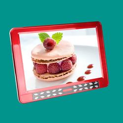 Portable Video Player DVD Player With TV Tuner/RadioDVD/USB/TF/AV IN/AV OUT/MIC/TV/FM