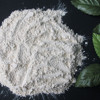 100mesh white garlic powder garlic vendor