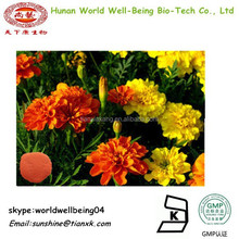 Natural Plant Colour Lutein Marigold Flower Extract Powder / Plant Extracts Powder Lutein Powder 5%-90%Marigold Extract