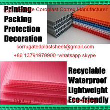 pp double layer plastic board/sheet