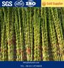 Roasted black Sesame Seeds price
