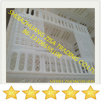 cheap price large plastic transport crates for live poultry