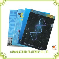 Stationery product Company office Logo printing supplier fc size paper file folder