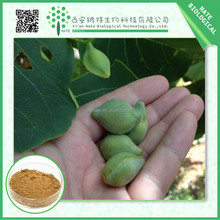 High quality Kakadu Plum Extract 17% VC extract powder with lower price manufactures