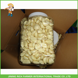 Good Quality Chinese Fresh Peeled Garlic Cloves Is Hot Sales