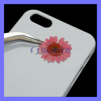Never Fade Real Flower Phone Case For iPhone 5 Specimin