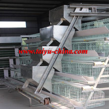 Automatic Poultry Layer Chicken Cage For Sale