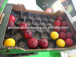 China/SGS/Many Sizes/Lemon Fruit or Vegetable Tray with Different Sizes and Color in Food Grade