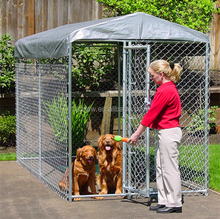 Large outdoor galvanised chain link dog kennels