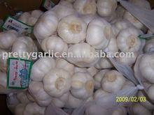 Normal White Garlic in China/Garlic Seed
