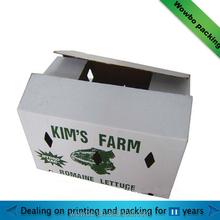custom made fruit or vegetables packaging paper box