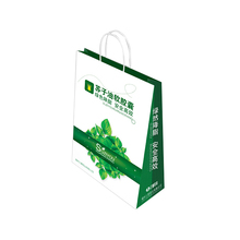 standard size shopping bag, promotion have company logo paper bag printed