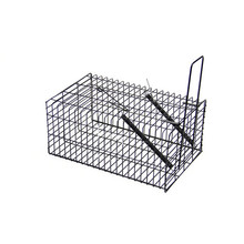 Stainless steel folded humane mouse trap cage