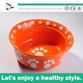 redondo azul plato de comida de perro