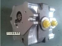 Used for NACHI PVD-2B series hydraulic pump gear pump