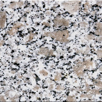 High Quality Low Price chinese granite tile wholesale
