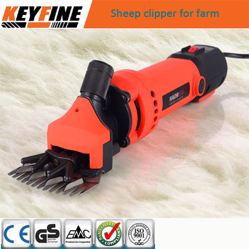 sheep clipper 2.jpg