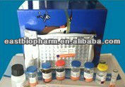 2014 New Human Hepcidin Prohormone(PRO-HEPC)ELISA Kit