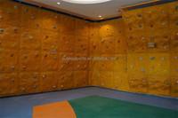 Fiber glass 3D panel kids mobile indoor climbing wall