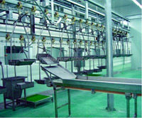 Chicken processing equipment for broilers