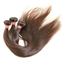 homeage top quality competitive price 100% virgin brazilian hair straight