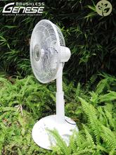 7 speeds OEM BLDC stand fan