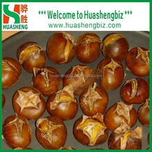 Chinese fresh chestnuts, sweet and easy peeling/Organic Roasted Chestnut/2015 Good Chinese Fresh Chestnut