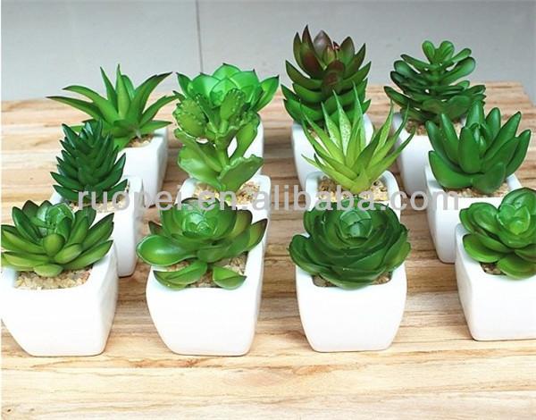 Yiwu venta al por mayor mini artificial verde plantas for Suculentas por mayor