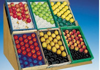 OEM Hot Sale Different Sizes Plastic PP Tomato Tray