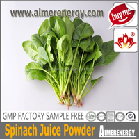 freeze dried spinach powder for Vegetarian food