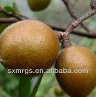 Essential Camellia Seed Oil For Skin Care