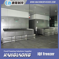 Hot Selling Cryogenic Flash Freeze Machine With High Quality