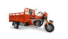 China Gold Supplier Scooter Cargo Tricycle High Quality Hot Sale