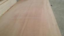 Top Quality,Moisture Resistant, Phenolic,Melamine Glue, Poplar Core, Birch face & back, commercial plywood