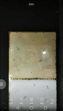 golden crystal granite tiles YC-300
