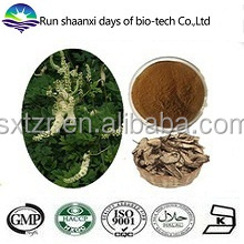 Natural Black Cohosh Triterpenoid Extract Actaea Racemosa Powder