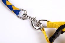 New design pet products wholesale nylon dog leashes