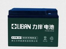 12V 30AH Lead Acid Battery 6-FM-30