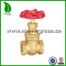 Brass rising stem gate valve