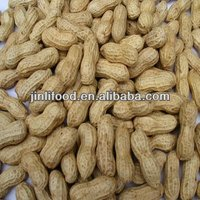 Offer new Crop 2012 Chinese raw peanut inshell washed